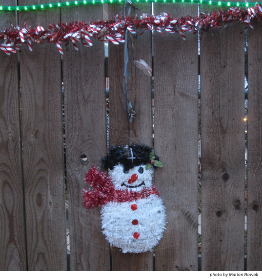 snowman9591